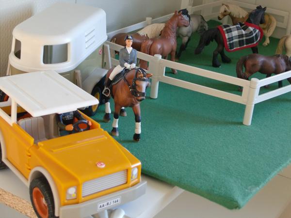 Lek med våra hästar eller titta i en bok.