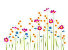 http://www.dreamstime.com/royalty-free-stock-images-flowers-garden-white-background-image31167629